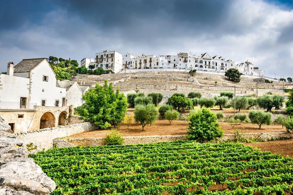 puglia wine regio italie reistips