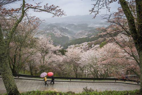 Japan, het land van contrasten