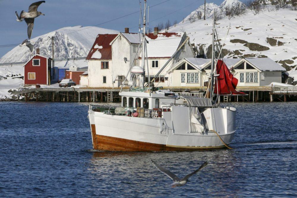 vissersbootje lofoten noorwegen reizen