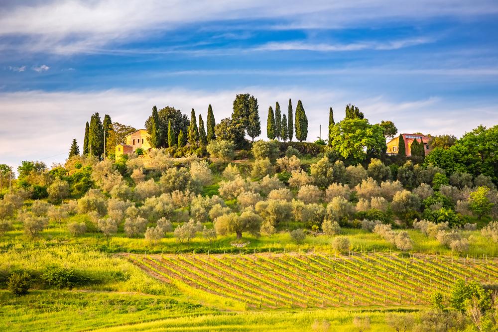Toscane, de bakermat van de renaissance