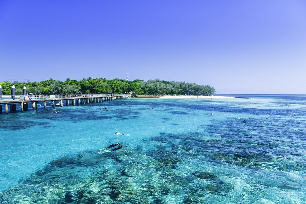 great barrier reef beste snorkelspots